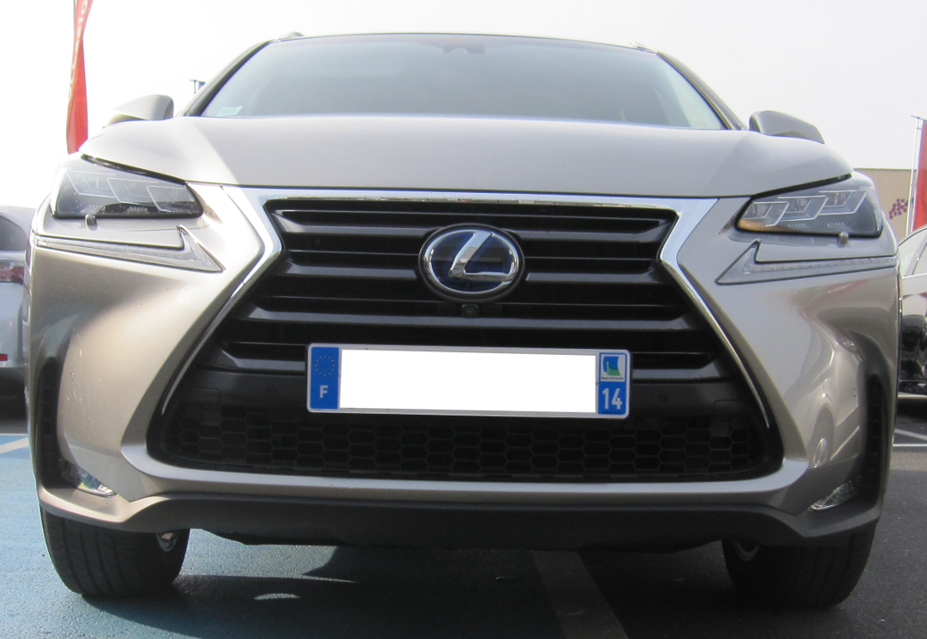 Lexus_NX_300h_Executive_5.jpg